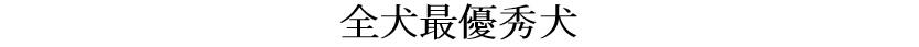 第25回岐阜CH展1-01-全犬最優秀犬