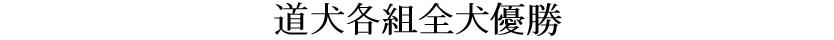 第25回岐阜CH展1-04-道犬各組全犬優勝