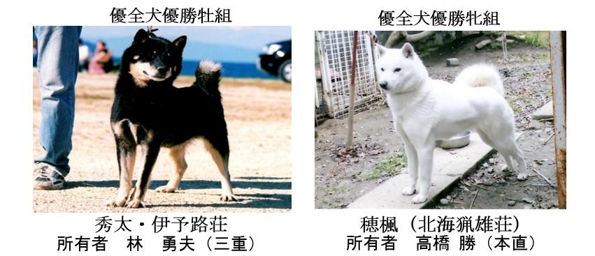 第25回岐阜CH展1-05-優全犬