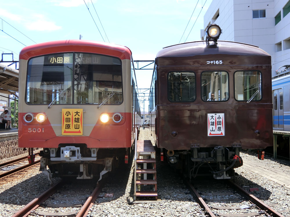 180630_大雄山コデ撮影会4