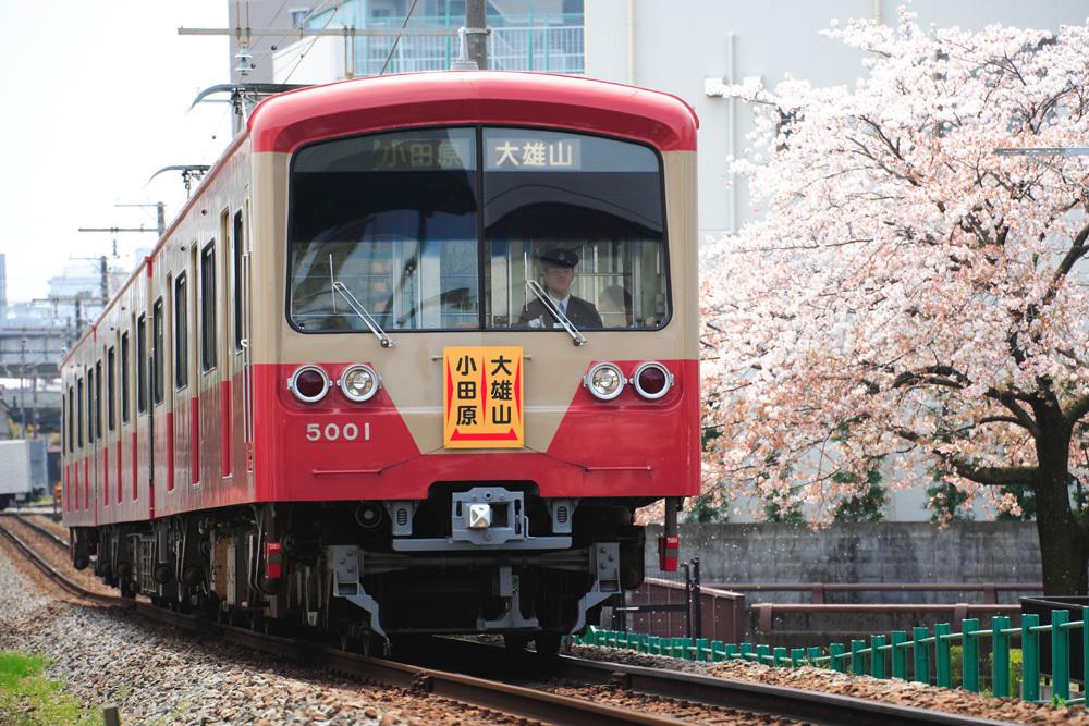 170416_伊豆箱根5000系赤電_桜