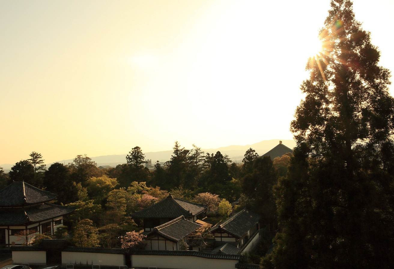 ブログ 二月堂から夕陽を眺める.jpg