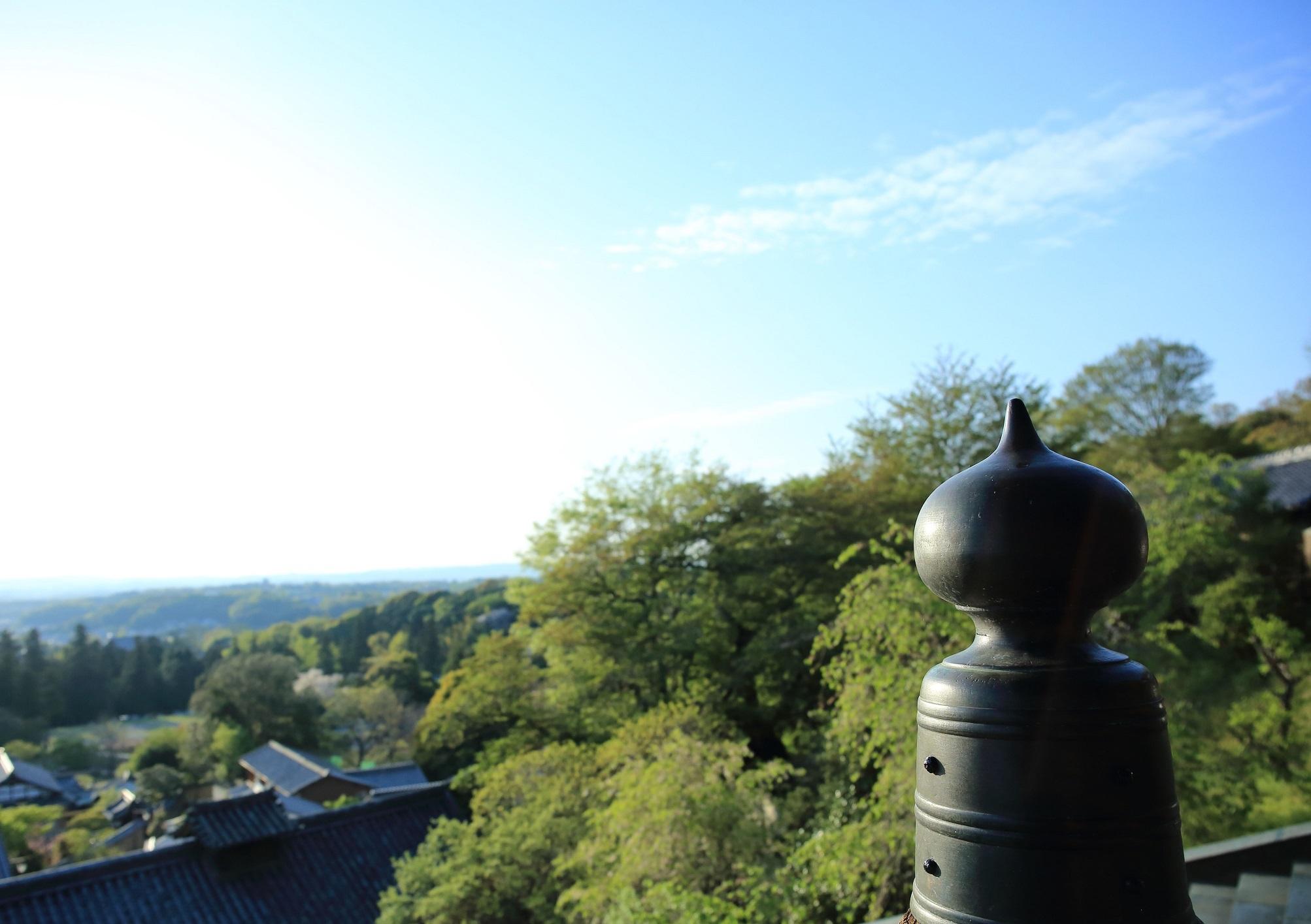 ブログ 新緑の三月堂からの眺め.jpg