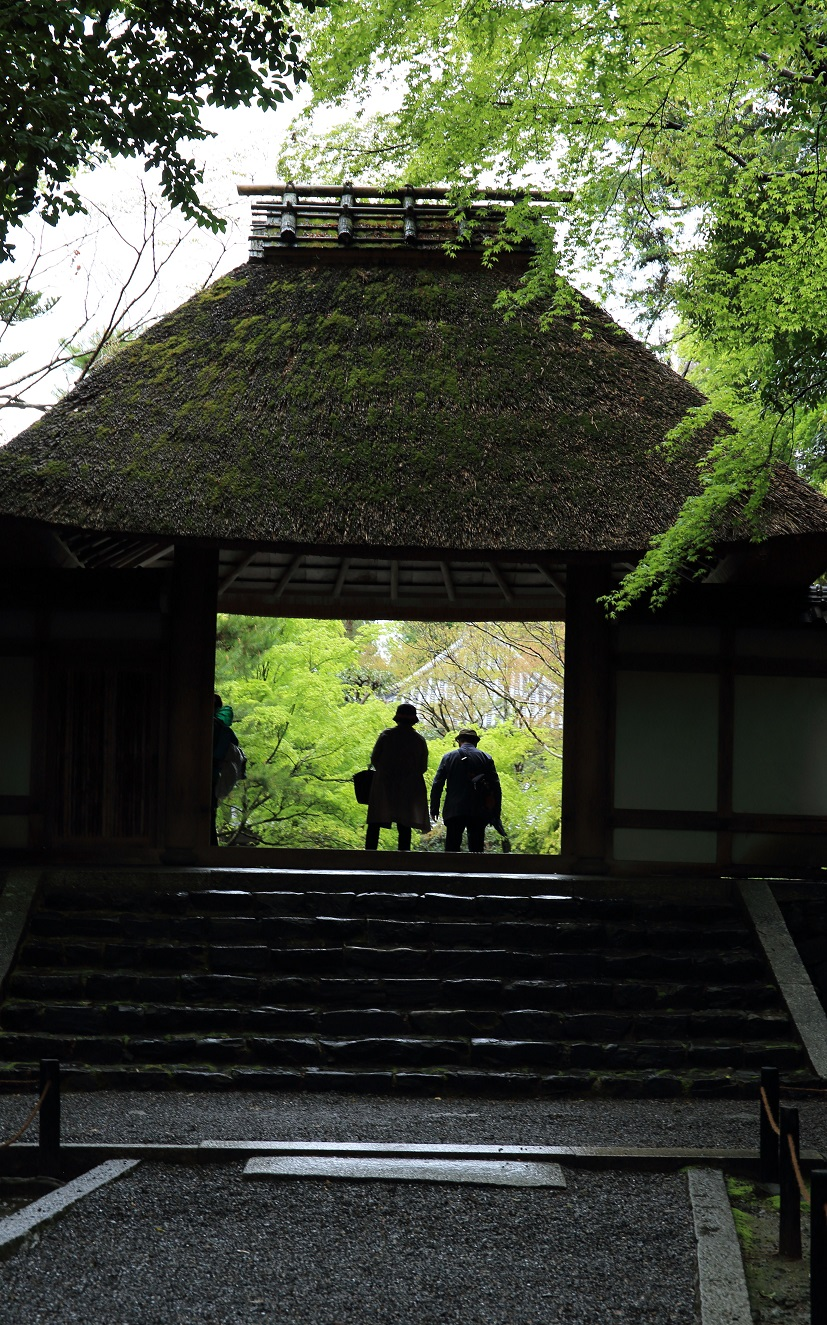 ブログ 法然院の山門.jpg