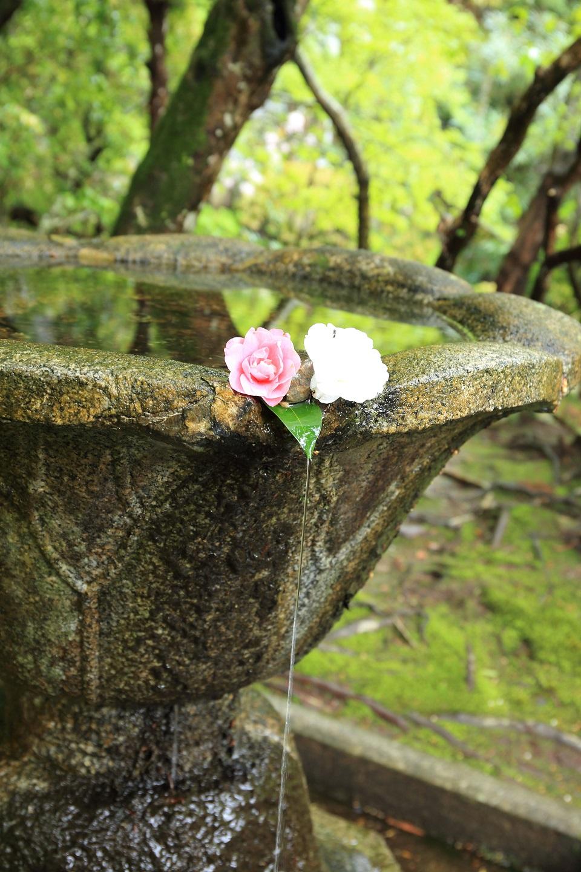 ブログ 法然院の水鉢.jpg