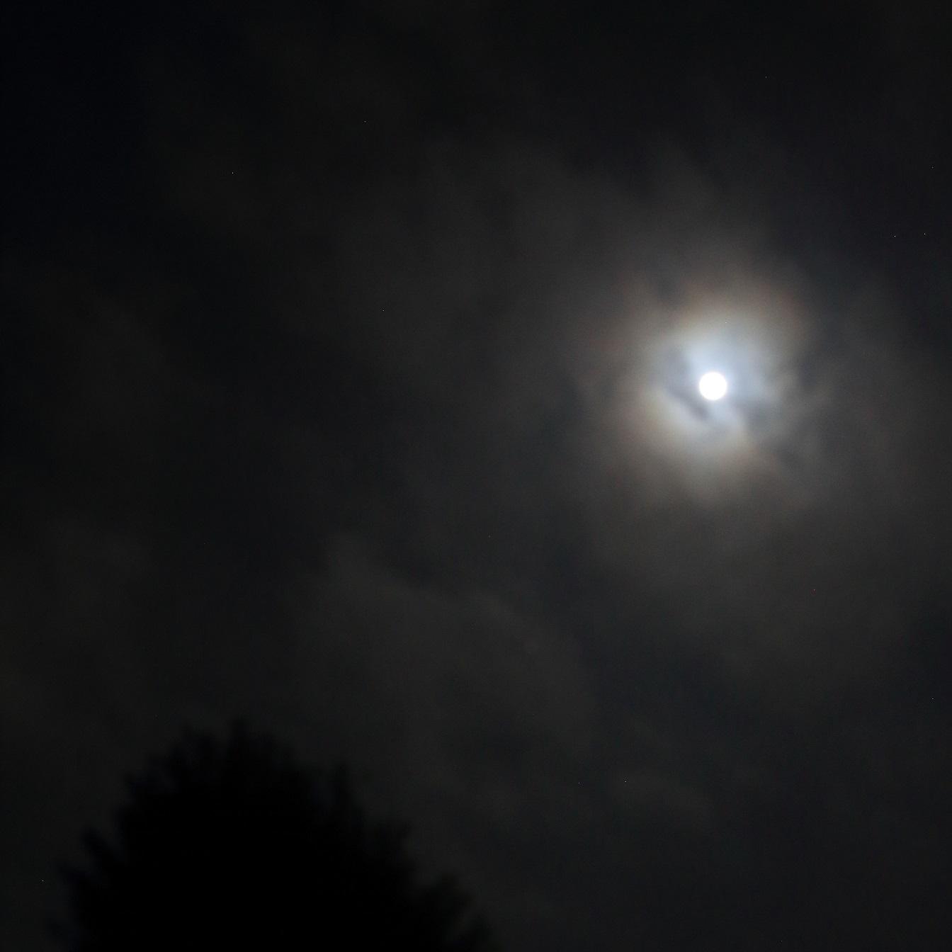 ブログ 2018 4 29 4月最後の十三夜 星月夜に触発されて.jpg