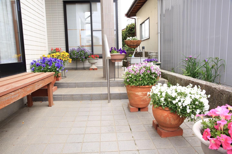 ブログ 我が家の表玄関の花.jpg