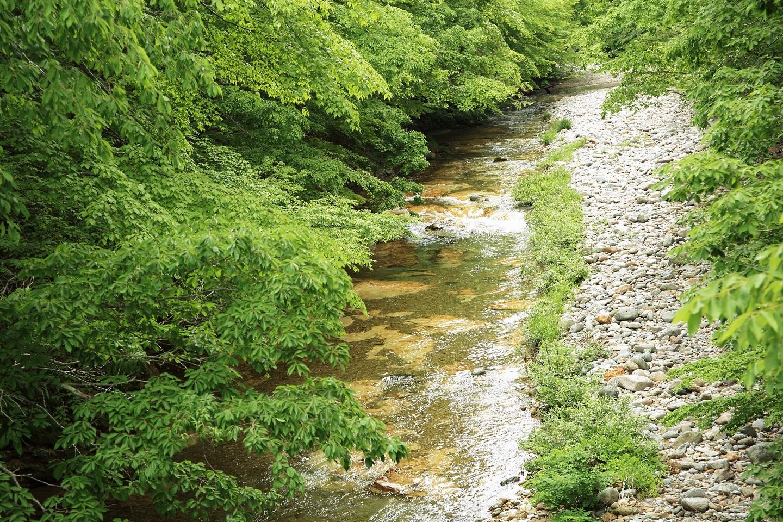ブログ 男鹿川は清冽な水が流れています.jpg