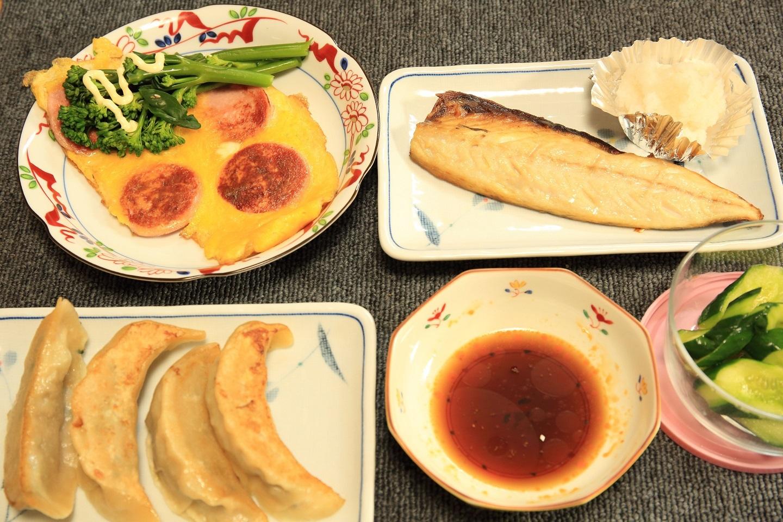 ブログ 夕食 頂きものの餃子.jpg