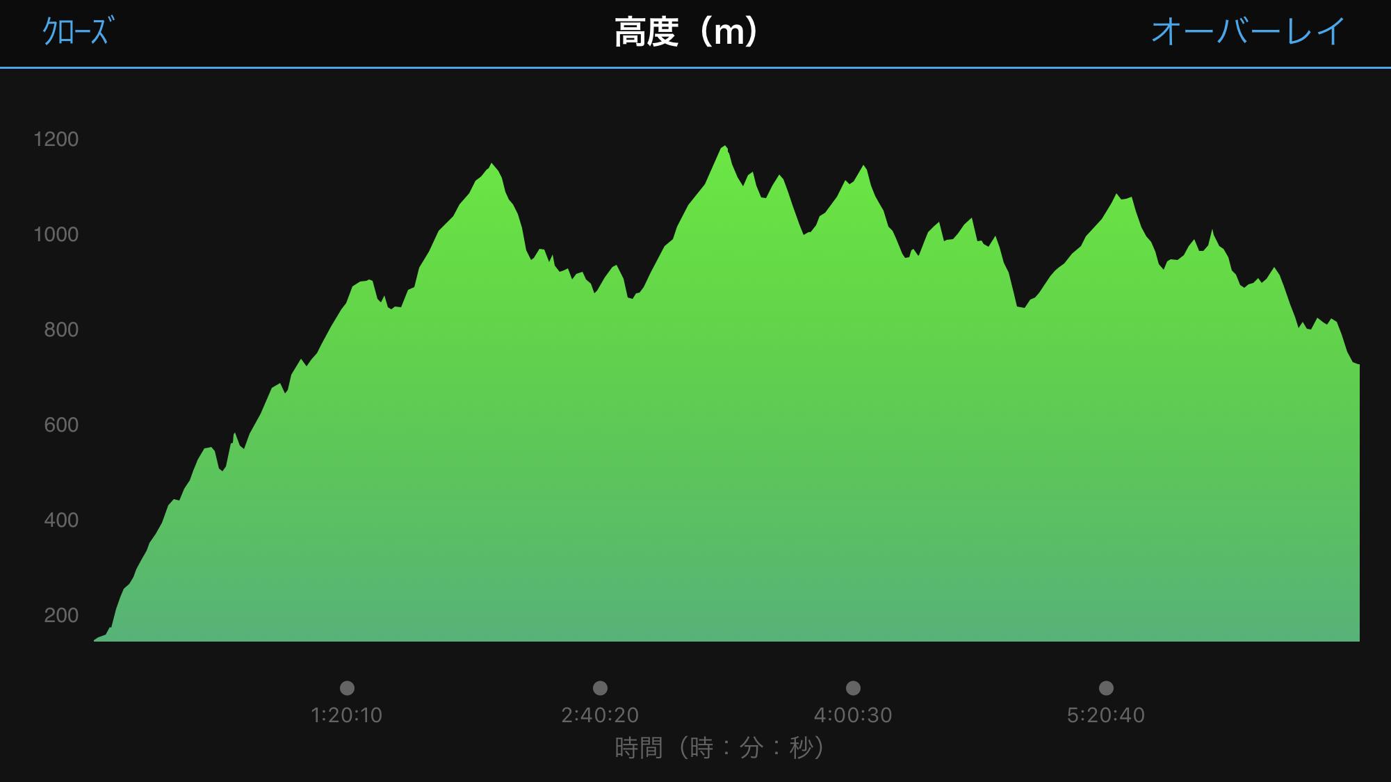 箱根外輪山トレイル24