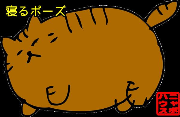 デブ猫ニャポポさん 寝るポーズ