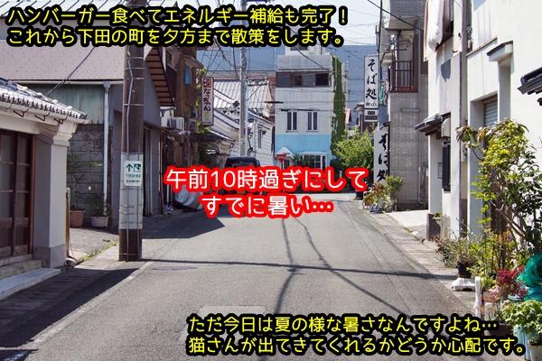 ニャポ旅50 伊豆下田 その1