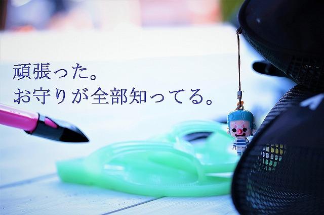 aca_07.jpg
