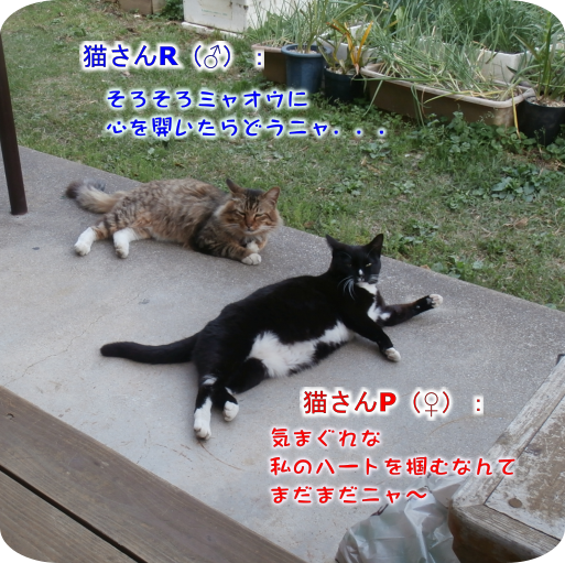 20180423132815ab0.png