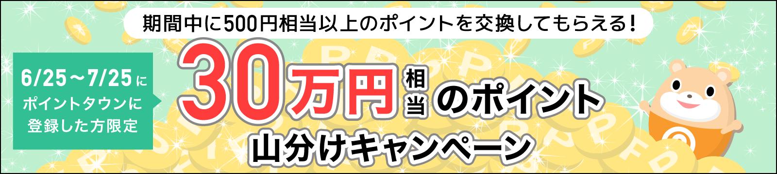 ポイントタウン 新規登録者限定 山分けキャンペーン