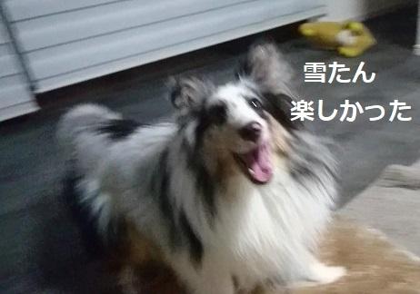MOV_9797_000006.jpg