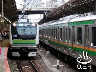 180610_kanagawa_12_jr_e233-6000_h009.jpg