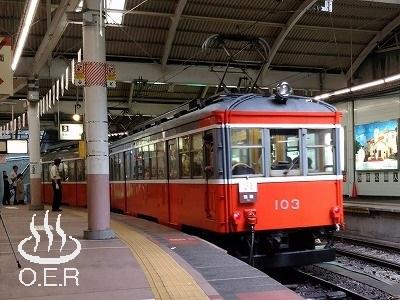 180611_kanagawa_09_hakonetozan_moha103.jpg
