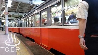 180611_kanagawa_10_hakonetozan_moha103F.jpg