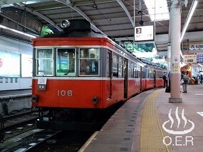 180611_kanagawa_11_hakonetozan_moha106.jpg