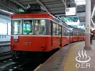180611_kanagawa_12_hakonetozan_moha107.jpg