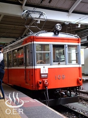 180611_kanagawa_14_hakonetozan_moha109.jpg