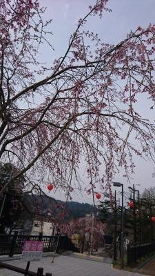 仙台西公園(400)