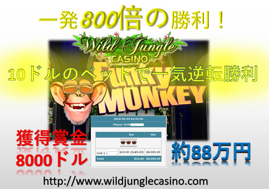FunkeyMonkey8000