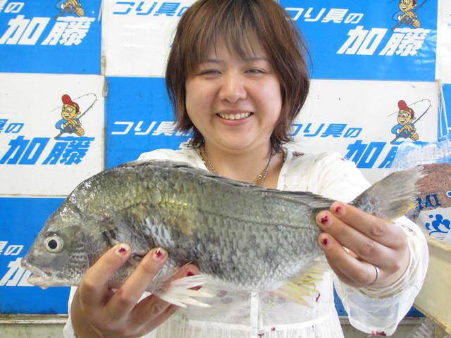 永田様男 (2)