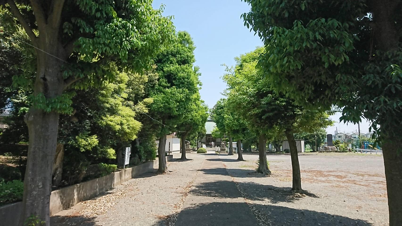 大沼神社 11