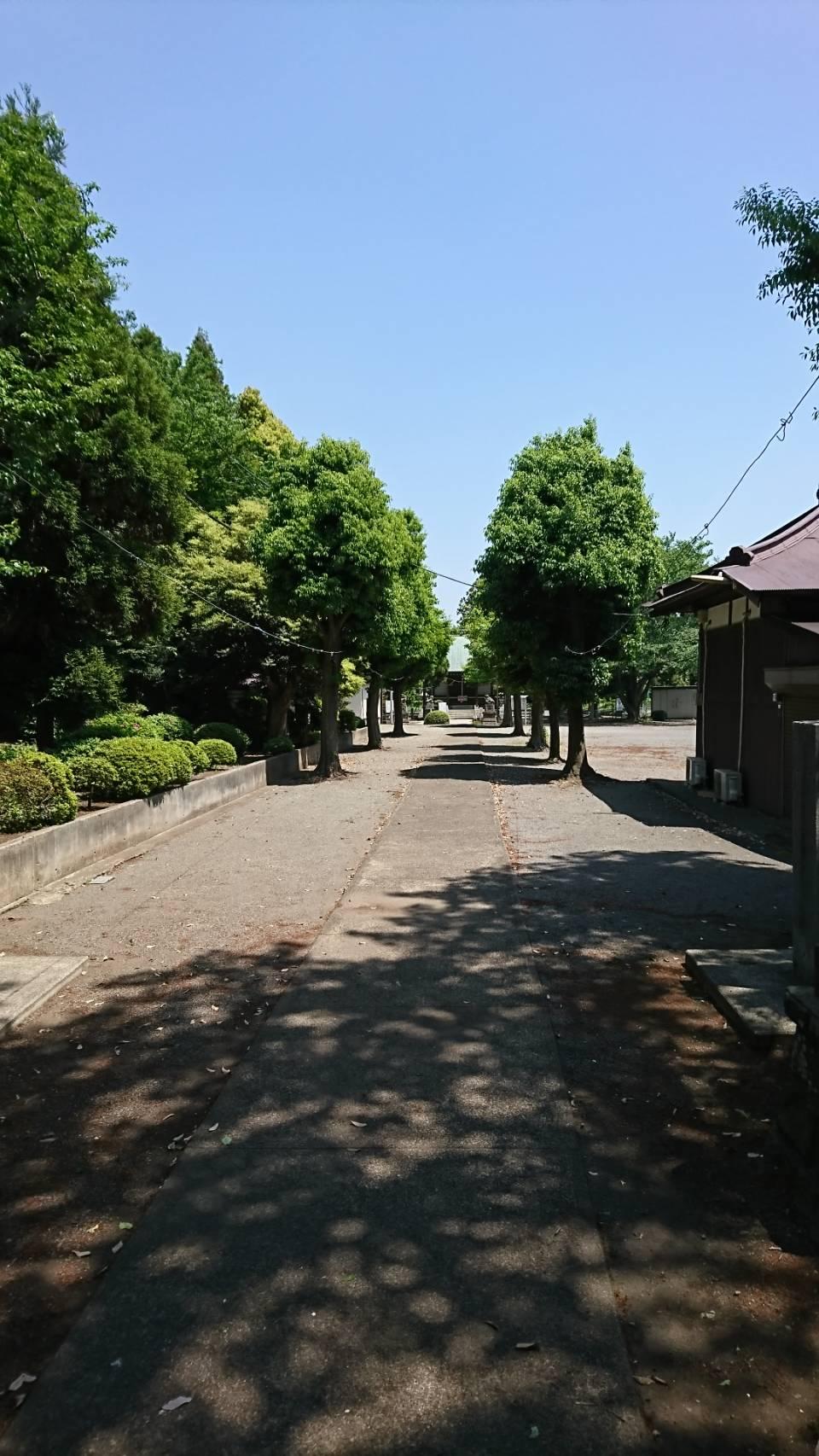 大沼神社 12