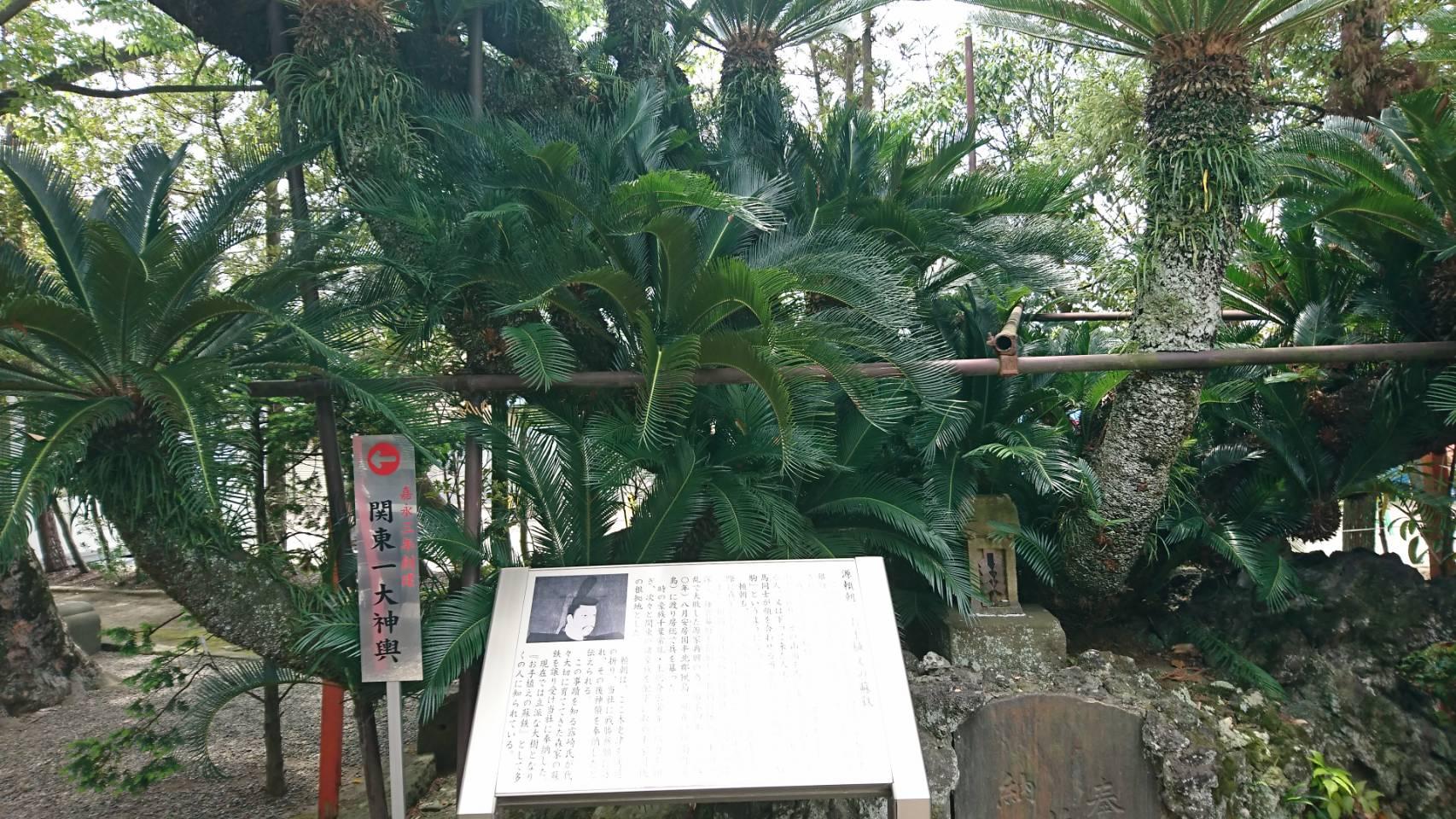 八剱八幡神社 5