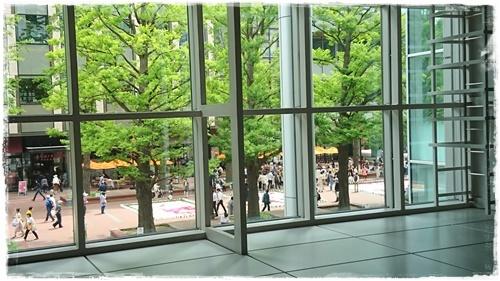 道庁DSC_5132