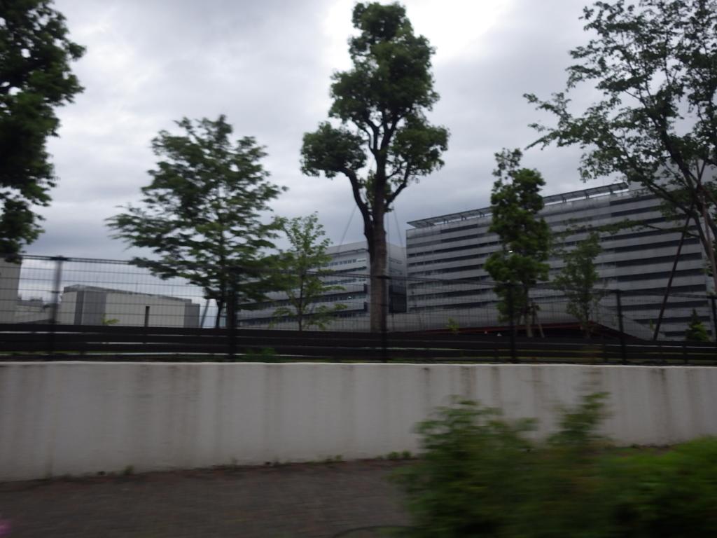 RIMG4639.jpg