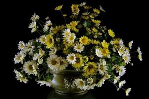 flowers-1742662__340 - コピー