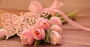 tulips-2068659__340.jpg