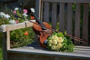 violin-1061240__340.jpg