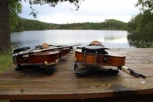 violins-2256763__340.jpg