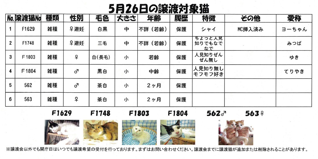 yurayura2.jpg