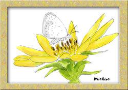 花と蝶 課題