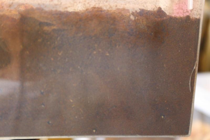 180520-010.jpg