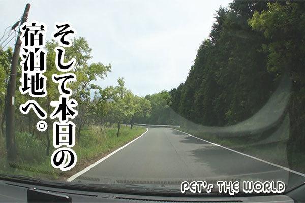 2018-05-16-10.jpg
