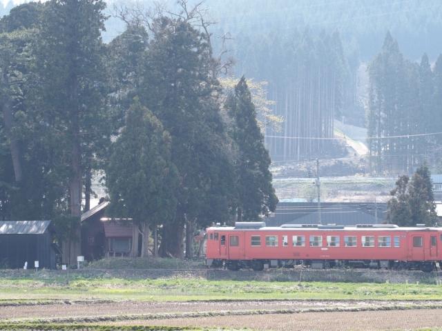 EM5S0538.jpg