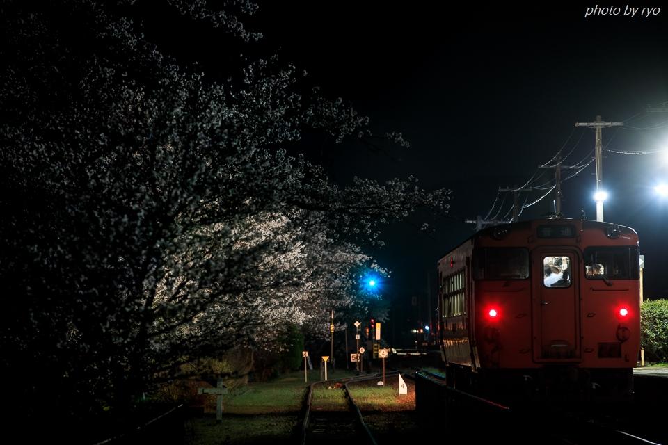 志和地駅の桜_1