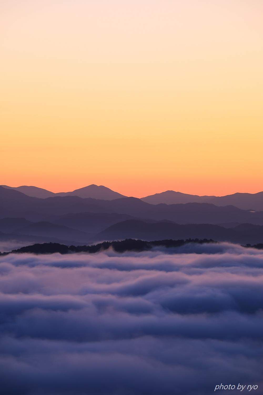 スッキリの霧の海_2