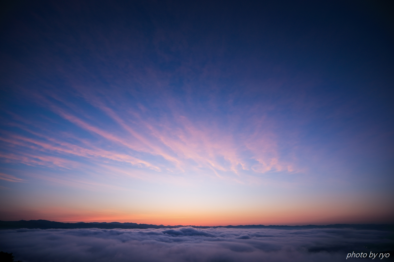 スッキリの霧の海_3