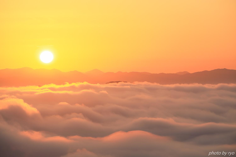 スッキリの霧の海_5