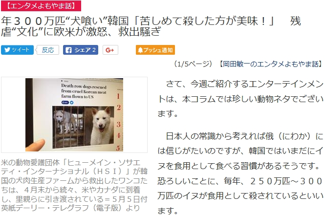 ③【残虐民族】韓国朝鮮人国は毎年300万匹の犬を惨殺している!