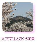 大文字山と桜絶景