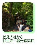 松尾大社から鈴虫寺へ観光客満杯